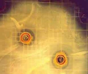 Atividade Antibacteriana da Própolis Verde